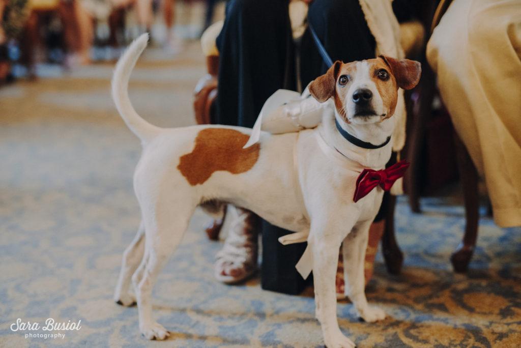 Sally&Flor Weddingday 12.07.2019-169